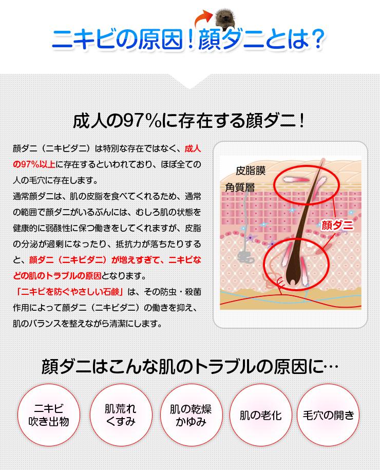 018212_opacy_antiacne_soap004.jpg